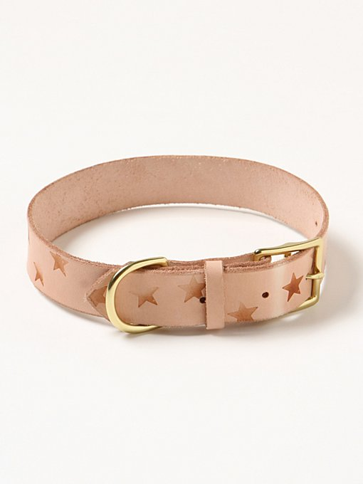 Burnout Star Leather Collar in fp-pet-project